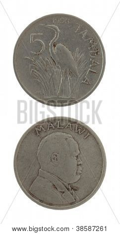 Malawian 5 tambala coin isolated on white