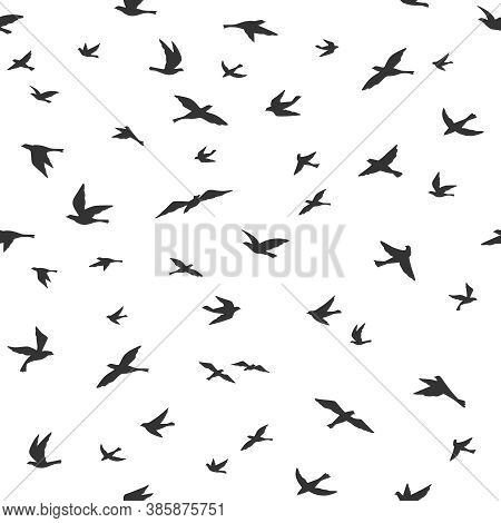 Flying Bird Seamless Pattern. Drawing Birds Flock Flying, Abstract Aerial Black Silhouettes In Sky,