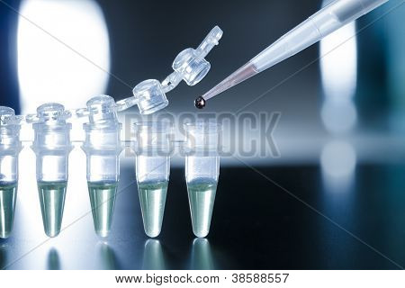 Stem cell research in the PCR strip