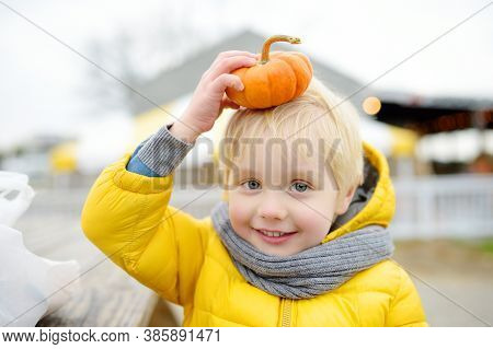 Cute Child Play With Small Orange Decorative Pumpkin. Little Boy With His Family Spend Time Together