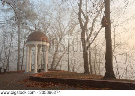White Arbor In The Fog In The Fall. Gomel, Belarus