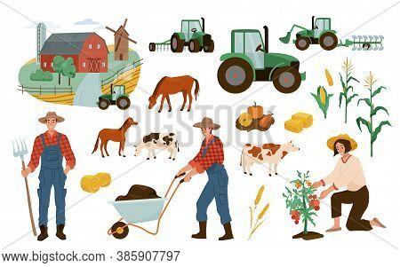 Farm Illustrations Vector Set. Farmers Working With Wheelbarrow, Gathering Tomato Harvest. Agricultu
