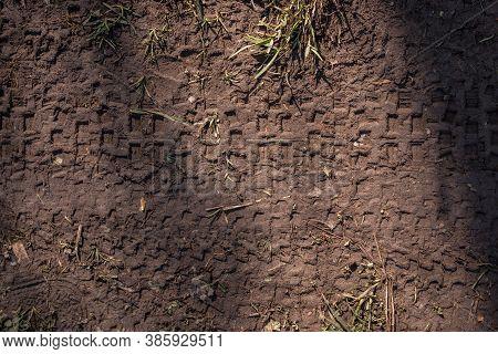 Tire Tracks Of Mountain Bikes On The Muddy Ground