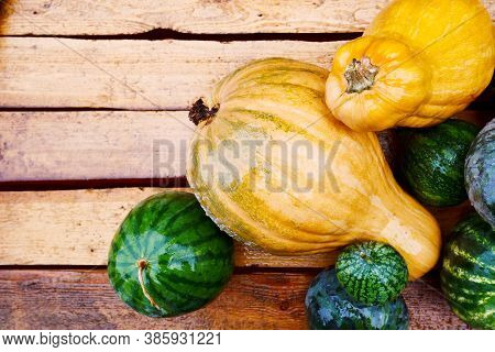 Autumn Harvest, Pumpkins, Watermelons On A Wooden Rural Table