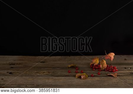 Viburnum Berries And Yellowed Leaves On The Surface Of Old Wood Boards. Autumn Still Life, Wallpaper