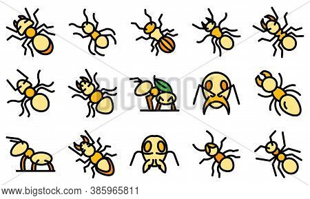 Ant Icons Set. Outline Set Of Ant Vector Icons Thin Line Color Flat On White