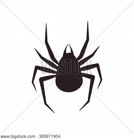 Spider Silhouette Is Arachnid. Vector Illustration Of A Flat Silhouette Spider Scary, Poisonous Anim