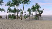 brachiosaurus on shore poster