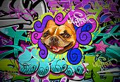 Graffiti wall urban art background. Grunge hip hop artistic design poster