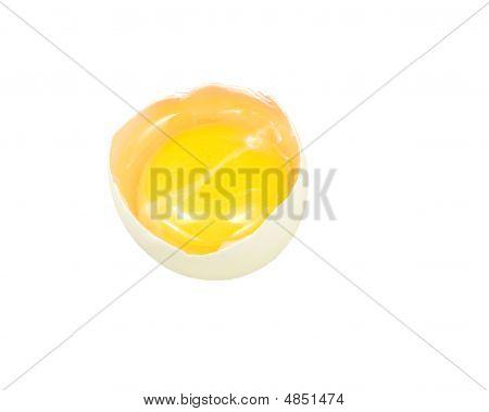 Freshly Cracked Egg