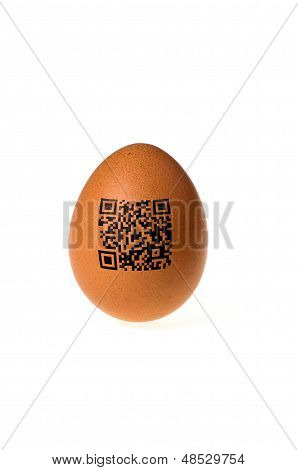 egg with qr code on a white background