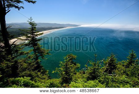 Cape Lookout View