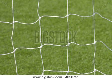 Net Over Grass