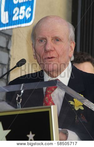 Lord David Rowe-Beddoe at the Richard Burton Posthumous Star On The Hollywood Wallk of Fame ceremony, Hollywood, CA 03-01-13