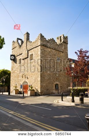 Irish medieval castle