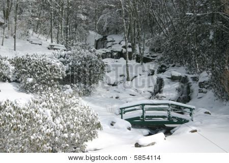 Newland Falls In Snow