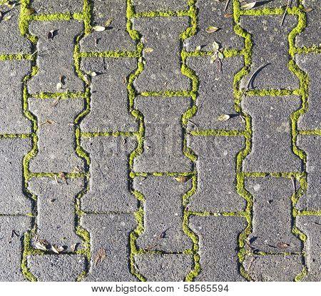 Harmonic Pattern Of Floor Structure