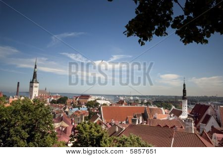 Roof Tops In Estonia
