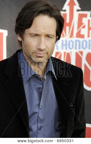 David Duchovny on the red carpet.
