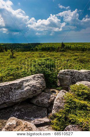 Storm Clouds Over Bear Rocks Preserve, Monongahela National Forest, West Virginia.