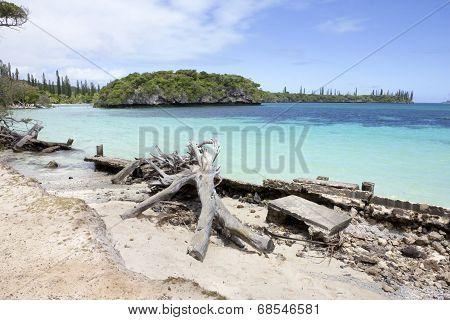 Shoreline, Kuto