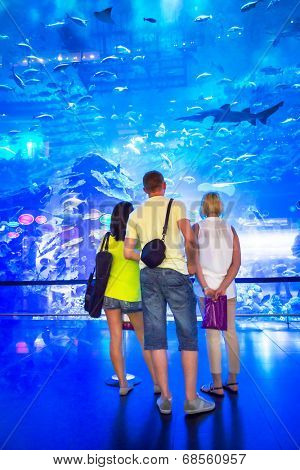 DUBAI, UAE - 1 APRIL 2014: People in front of the Oceanarium inside Dubai Mall. It is the largest indoor aquarium in the world at a length of 50 meters long and 10 million litres of water.