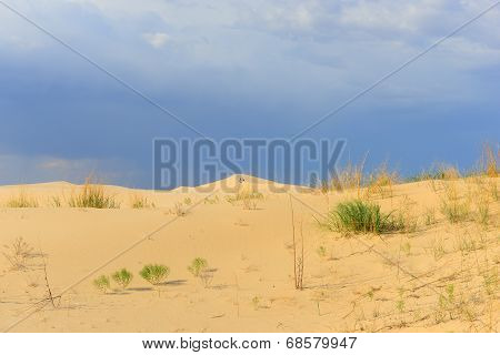 Monahans sand hills in West TEXAS