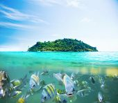 Underwater picture with fish and remote island - exotic holiday concept poster