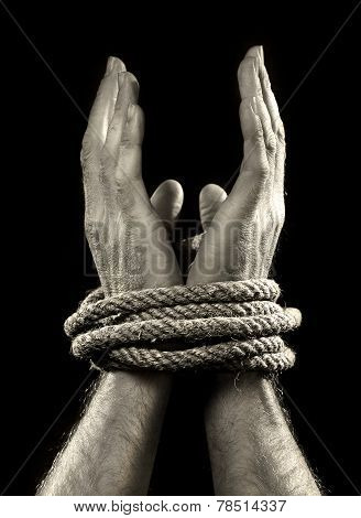 White Man Hands Wrapped With Rope Around Wrists In Victim Abused In Captivity, Slave Of Work And Res