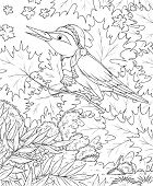 Black-and-white illustration for a coloring book: song bird perching on a tree branch in an autumn forest poster