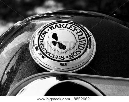 Logo of Harley - Davidson