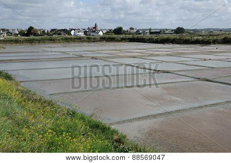 France the salt evaporation pond in Guerande poster