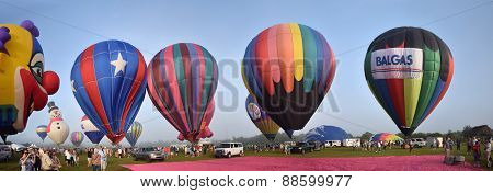 Hot Air Ballons In Early Morning Panoramic View