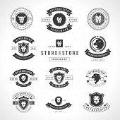 Vintage Lion Logotypes set mascot emblem symbol. Can be used for shirts print, labels, badges, stickers vector illustration. poster