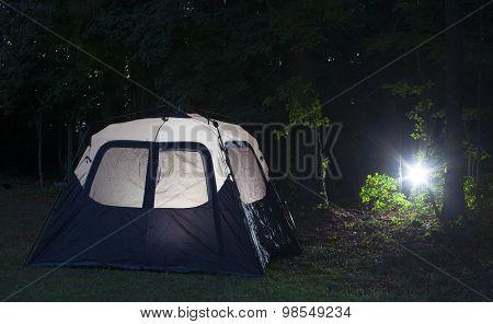 Back In Camp