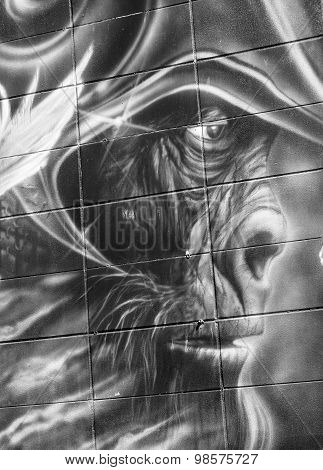 Street art Planet of the apes