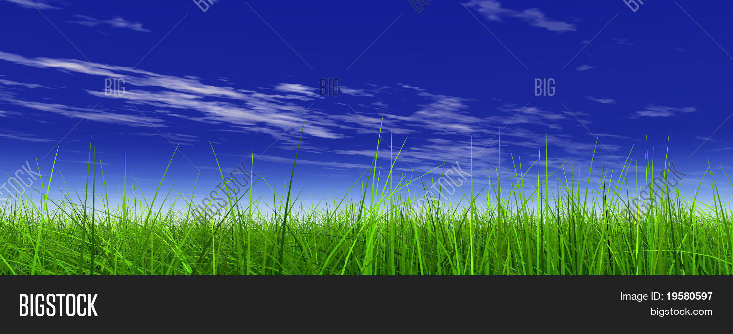 High Resolution 3d Image Photo Free Trial Bigstock