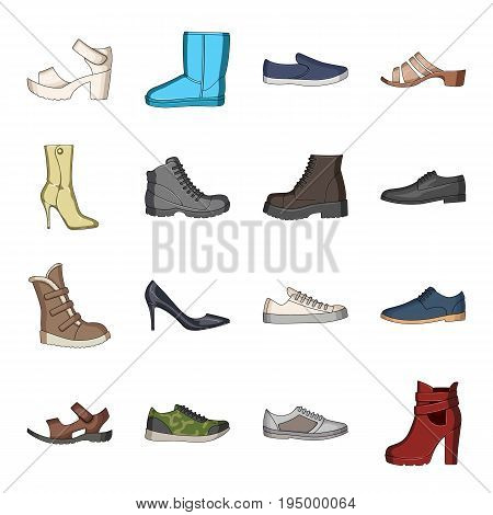 Shoes, style, heel and other types of shoes. Different shoes set collection icons in cartoon style vector symbol stock illustration.