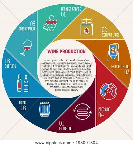 Thin line infographic of wine fermentation. Circle diagram with eight equal parts that shows how wine is made and created, winemaker tool set. Production of alcoholic beverages. Vector illustration.