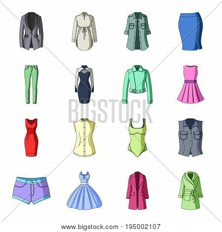 Dress, sarafan, coats of women's clothing. Women's clothing set collection icons in cartoon style vector symbol stock illustration .