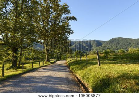 Gravel Road on Summer Day in the Smokies