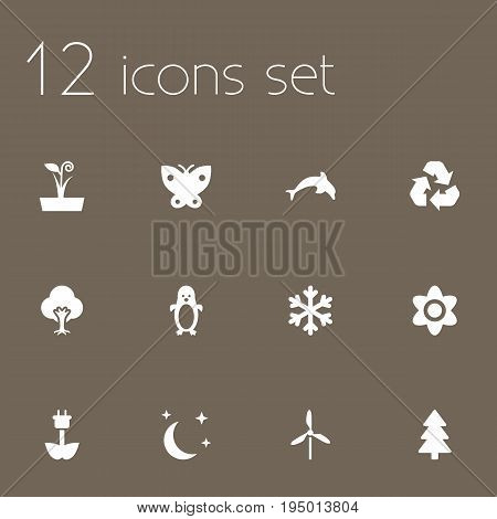 Set Of 12 Ecology Icons Set.Collection Of Flowerpot, Tree, Spruce And Other Elements.