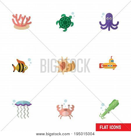 Flat Icon Marine Set Of Tortoise, Medusa, Tentacle And Other Vector Objects. Also Includes Algae, Cockleshell, Crab Elements.