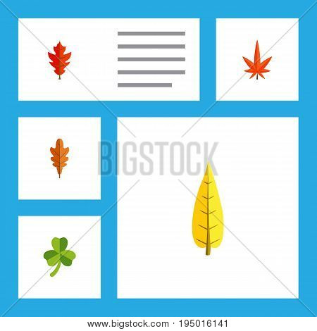 Flat Icon Maple Set Of Linden, Aspen, Frond And Other Vector Objects. Also Includes Maple, Frond, Foliage Elements.