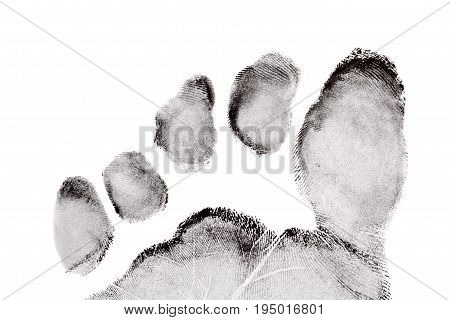 Foot Finger Print On White Background
