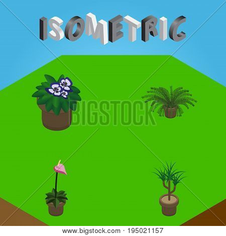 Isometric Flower Set Of Grower, Flowerpot, Houseplant And Other Vector Objects. Also Includes Fern, Flower, Pot Elements.