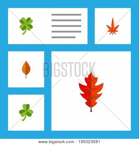 Flat Icon Leaves Set Of Frond, Aspen, Leaf And Other Vector Objects. Also Includes Alder, Hickory, Linden Elements.