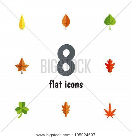 Flat Icon Foliage Set Of Linden, Frond, Alder And Other Vector Objects. Also Includes Maple, Oaken, Alder Elements.