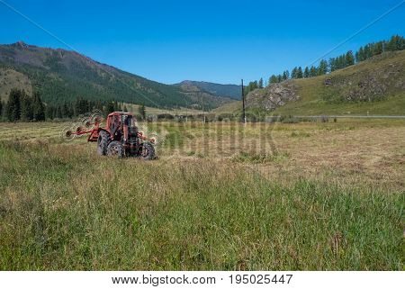 A red tractor mows the grass on the field in the Republic of Altai.