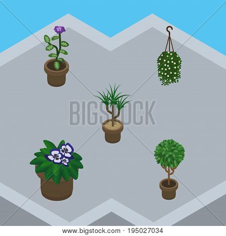 Isometric Houseplant Set Of Houseplant, Blossom, Flowerpot And Other Vector Objects. Also Includes Botany, Pot, Plant Elements.